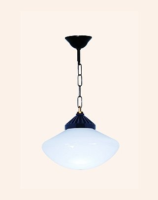 Y.A.4902 - Modern Pendant Lighting
